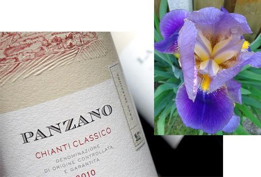 Bottiglia di Panzano Chianti classico gran selezione, direttamente dalla cantina Castelli del Grevepesa